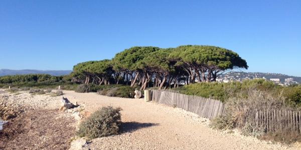 Landschap Sainte Marguerite