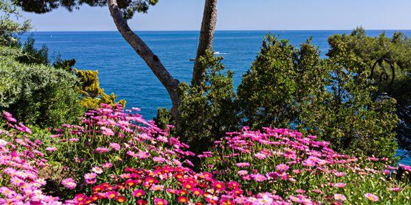 Park Jardin de Saint Martin Monaco