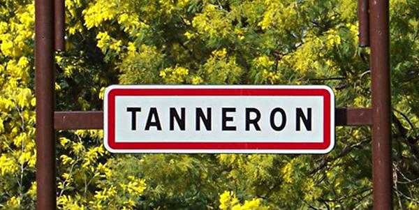 Tanneron